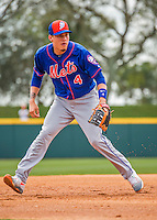 3 March 2016: New York Mets infielder Wilmer Flores warms up prior to a Spring Training pre-season game against the Washington Nationals at Space Coast Stadium in Viera, Florida. Mandatory Credit: Ed Wolfstein Photo *** RAW (NEF) Image File Available ***
