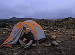 Ascension du Kilimandjaro (5895 m) par la voie Lemosho et Machamé. Campemant a Barafut (4100 m).