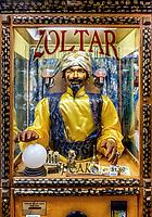 Zoltar Ocean City MD Maryland
