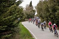 peloton descending a snake-road<br /> <br /> Stage 2 from Camaiore to Chiusdino (202km)<br /> <br /> 56th Tirreno-Adriatico 2021 (2.UWT) <br /> <br /> ©kramon