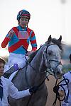 DUBAI,UNITED ARAB EMIRATES-MARCH 26: UAE Derby,ridden by Yutaka Take,wins the UAE Derby at Meydan Racecourse on March 26,2016 in Dubai,UAE (Photo by Kaz Ishida)