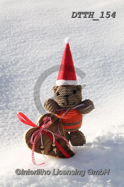 Helga, CHRISTMAS ANIMALS, WEIHNACHTEN TIERE, NAVIDAD ANIMALES, photos+++++,DTTH154,#xa#
