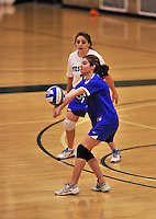 28 October 2012: Yeshiva University Maccabee setter Shana Wolfstein, a Sophomore from Burlington, VT, in action against the SUNY Old Westbury Panthers at SUNY Old Westbury in Old Westbury, NY. The Panthers defeated the Maccabees 3-0 in NCAA women's volleyball play. Mandatory Credit: Ed Wolfstein Photo