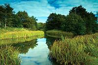 Darnley Mill, Dams to Darnley Country Park, Darnley, Glasgow