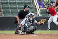 Charleston RiverDogs catcher Luis Torrens (15) sets a target as home plate umpire Tom West looks on during the game against the Kannapolis Intimidators at Kannapolis Intimidators Stadium on August 3, 2016 in Kannapolis, North Carolina.  The Intimidators defeated the RiverDogs 8-4.  (Brian Westerholt/Four Seam Images)