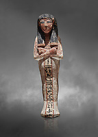 Ancient Egyptian shabtis doll, lwood, New Kingdom, 18th Dynasty, (1538-1040 BC), Deir el Medina. Egyptian Museum, Turin. Grey background. <br /> <br /> shabti figures began to occur in Middle Kingdom tombs with a twofold nature: on <br /> the one hand, they were meant to be images of their owners, representatives of the deceased in the realm of the Lord of Eternity. <br /> On the other hand, they were also considered to be servants of the deceased, taking the role of the servant statues. The complex <br /> nature of the shabti figure as a substitute of both the owner and his or her servants remains unaltered during the New Kingdom