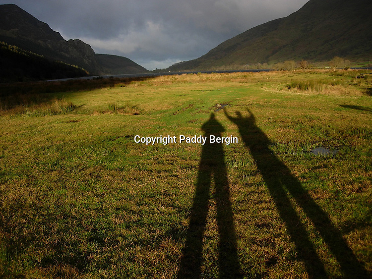 Early morning Winter light at the base of Snowdon on the west side.<br /> <br /> Stock Photo by Paddy Bergin