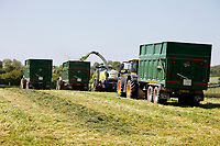 Photo: Richard Lane/Richard Lane Photography. A Class self propelled forage harvester loading a trailer during 1st cut grass silage making near Wincanton, Somerset. 15/05/2018.