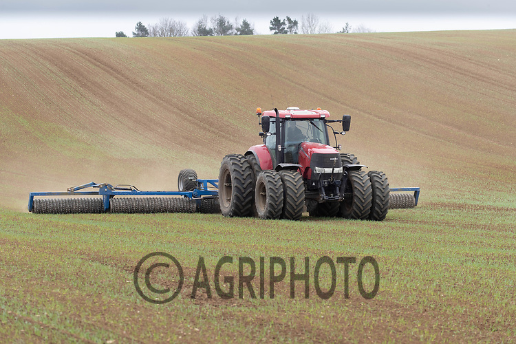 1-4-2021 Rolling cereals in  Lincolnshire <br /> ©Tim Scrivener Photographer 07850 303986<br />      ....Covering Agriculture In The UK....