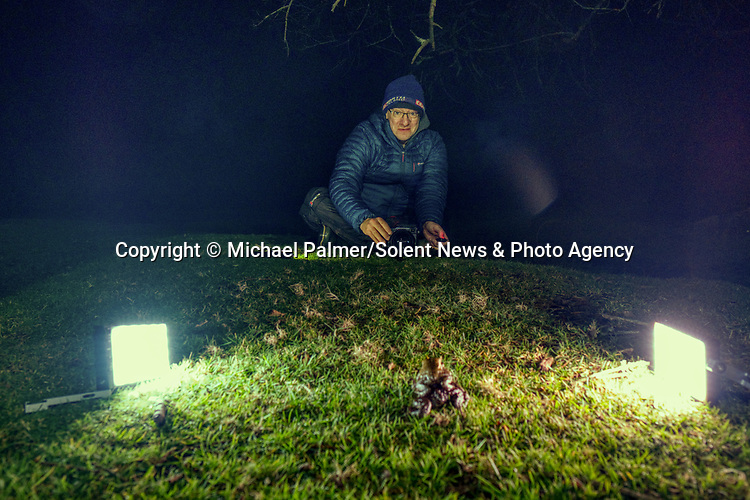 Pictured:  Michael Palmer taking the photos of the frogs/toads<br /> <br /> Incredible detail and textures on the skins of frogs and toads is captured at night.  While many people assume these amphibians are slimy and smooth, these amazing photos show another side to the creatures, revealing a bumpy, textured surface to their skin.<br /> <br /> The animals gathered around Janesmoor Pond in the New Forest during mating season and were photographed by 51 year old Michael Palmer from nearby Southampton, Hants.  SEE OUR COPY FOR DETAILS.<br /> <br /> Please byline: Michael Palmer/Solent News<br /> <br /> © Michael Palmer/Solent News & Photo Agency<br /> UK +44 (0) 2380 458800