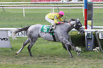 18 JUL 2009: Silver Timber with Eibar Coa up win the 26th running of the Grade 3 Jaipur Stakes