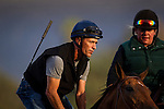 October 25 2014: Hall of Fame rider, Gary Stevens continues his comeback from knee surgery in preparation to return to riding in the Breeders' Cup at Santa Anita Park in Arcadia CA. Alex Evers/ESW/CSM
