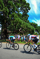 Fans watch stage five of the 2018 NZ Cycle Classic UCI Oceania Tour (Masterton criterium) in Masterton, New Zealand on Friday, 21 January 2018. Photo: Dave Lintott / lintottphoto.co.nz