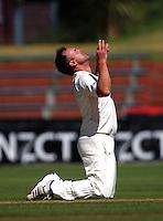 130223 Cricket - Wellington Firebirds v Otago Volts
