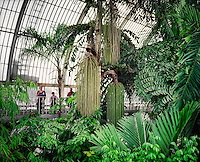Tourists look at various plant species inside the Palm House at the Royal Botanical Gardens, Kew in London.