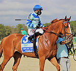 February 6, 2021: #3 GET SMOKIN smokes 'em in the Tampa Bay Stakes with Junior Alvarado up for Trainer Thomas Bush at Tampa Bay Downs in Oldsmar, Florida on February 6, 2021. Delikat/Eclipse Sportswire/CSM