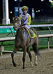 June 15, 2019: , trained by , wins the Stephen Foster (G2) at Churchill Downs on June 15, 2019 in Louisville, KY. Jessica Morgan/ESW/CSM