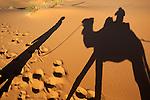 Morocco, Meknes-Tafilalet, Merzouga: Erg Chebbi, large dunes formed by wind-blown sand with shadow of camel and rider | Marokko, Meknes-Tafilalet, Merzouga: Erg Chebbi, durch Verwehungen entstandene Duenen mit Schatten von Kamel und Reiter