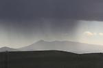 A rainbow seen over mustard fields in Napa Valley, CA