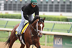 Discreetly Mine works at Churchill Downs in preparation for The Kentucky Derby. 04.22.2010