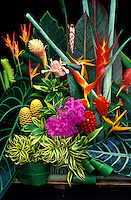 An arrangement of mixed tropical flowers and foliage including heliconia, ginger, orchid, and bromeliad