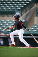 GCL Orioles second baseman Alejandro Juvier (16) at bat during the first game of a doubleheader against the GCL Rays on August 1, 2015 at the Ed Smith Stadium in Sarasota, Florida.  GCL Orioles defeated the GCL Rays 2-0.  (Mike Janes/Four Seam Images)