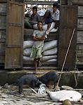 Cyclone Nargis survivors pose as they stand next to a rice storage in the village of Kamingo, at the Irrawaddy Division, May 10, 2008. Despairing survivors in Myanmar awaited emergency relief on Friday, a week after 100,000 people were feared killed as the cyclone roared across the farms and villages of the low-lying Irrawaddy delta region. The storm is the most devastating one to hit Asia since 1991, when 143,000 people were killed in neighboring Bangladesh. Photo by Eyal Warshavsky  *** Local Caption *** ëì äæëåéåú ùîåøåú ìàéì åøùáñ÷é àéï ìòùåú áúîåðåú ùéîåù ììà àéùåø