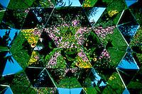 Kaliedescope flower pattern.