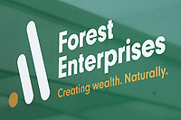 190716 Forest Enterprises