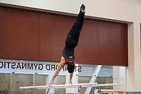 Stanford Gymnastics M v Springfield College, March 05, 2021