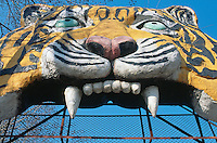 China. Province of Heilongjiang. Harbin. Siberia Tiger Park. A fake tiger mouth is at the gate's entrance to the tigers area. © 2004 Didier Ruef