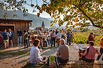 Oesterreich, Niederoesterreich, Kulturlandschaft Wachau - UNESCO Weltkultur- und Naturerbe, Weissenkirchen in der Wachau: Weinort am linken Donauufer mit der Pfarrkirche Mariae Himmelfahrt - Treffpunkt zum Heurigen in den Weinbergen | Austria, Lower Austria, Wachau Cultural Landscape - UNESCO World's Cultural and Natural Heritage, Weissenkirchen in der Wachau: wine village on the left bank of the Danube with parish church Mary Assumption - wine taverns in the vinyards