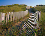 Cape Cod National Seashore, MA<br /> Wooden fences define a winding sand path through dunes on the Great Island Trail, Great Island near Wellfleet