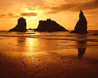 Sunset light on sea stacks and beach at Crescent Beach; Ecola State Park (Cannon Beach), OR