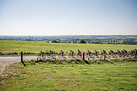 peloton led by the pink brigade of Team EF Education - Nippo<br /> <br /> 17th Benelux Tour 2021<br /> Stage 5 from Riemst to Bilzen (BEL/192km)<br /> <br /> ©kramon