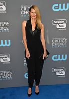 Laura Dern at the 23rd Annual Critics' Choice Awards at Barker Hangar, Santa Monica, USA 11 Jan. 2018<br /> Picture: Paul Smith/Featureflash/SilverHub 0208 004 5359 sales@silverhubmedia.com