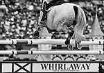 April 27, 2014: AVEBURY, ridden by Andrew Nicholson (NZL), competes in the Stadium Jumping Finals at the Rolex Kentucky 3-Day Event at the Kentucky Horse Park in Lexington, KY. Scott Serio/ESW/CSM