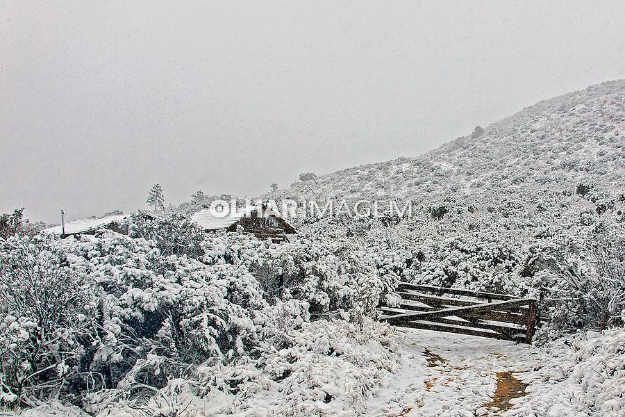Inverno com neve no Parque Nacional de Sao Joaquim. Urubici. Santa Catarina. 2014. Foto de Andre Arcenio.