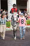 Snow Top Mountain in the saddling paddock before winning the Suwannee River Stakes(G3 T) at Gulfstream Park. Hallandale Beach, Florida. 02-11-2011