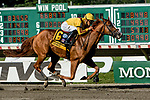 OCEANPORT, NJ - JULY 29: on Haskell Invitational Day at Monmouth Park Race Course on July 29, 2018 in Oceanport, New Jersey. (Photo by Sue Kawczynski/Eclipse Sportswire/Getty Images)
