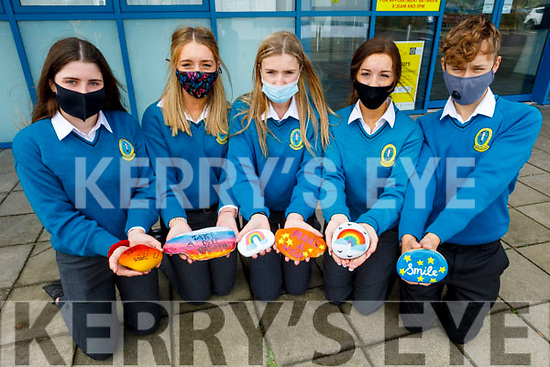 Students Nora Cadogan, Lauren Smullen, Katie Kennedy, Eadrea Hayes and Eryk Borowi of the Anxiety Society TY class in Mercy Mounthawk on Tuesday display their works on dealing with anxiety.