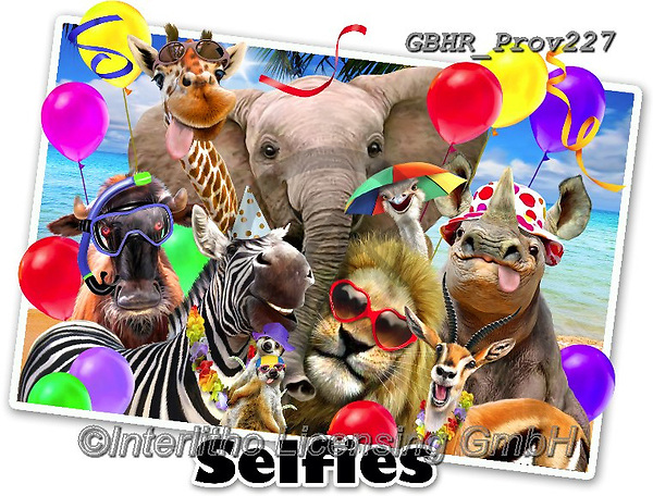 Howard, REALISTIC ANIMALS, REALISTISCHE TIERE, ANIMALES REALISTICOS, selfies, paintings+++++Africa beach party,GBHRPROV227,#a#, EVERYDAY ,elephant,zebra,lion,rhino,