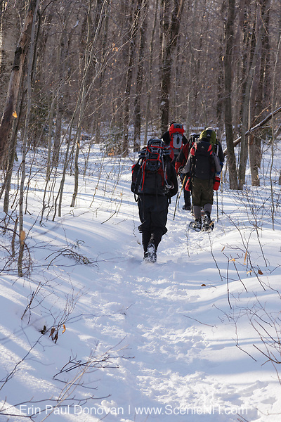 Group of hikers on Garfield Trail during the winter months. Located in the White Mountains, New Hampshire USA