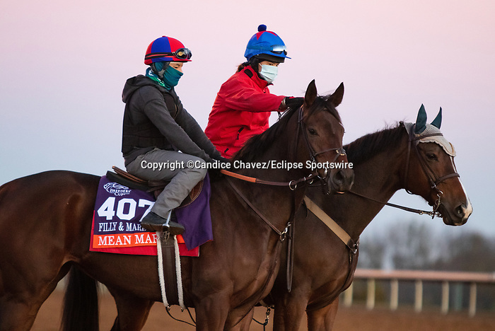 Mean Mary, trained by trainer H. Graham Motion, exercises in preparation for the Breeders' Cup Filly & Mare Turf at Keeneland Racetrack in Lexington, Kentucky on November 4, 2020.