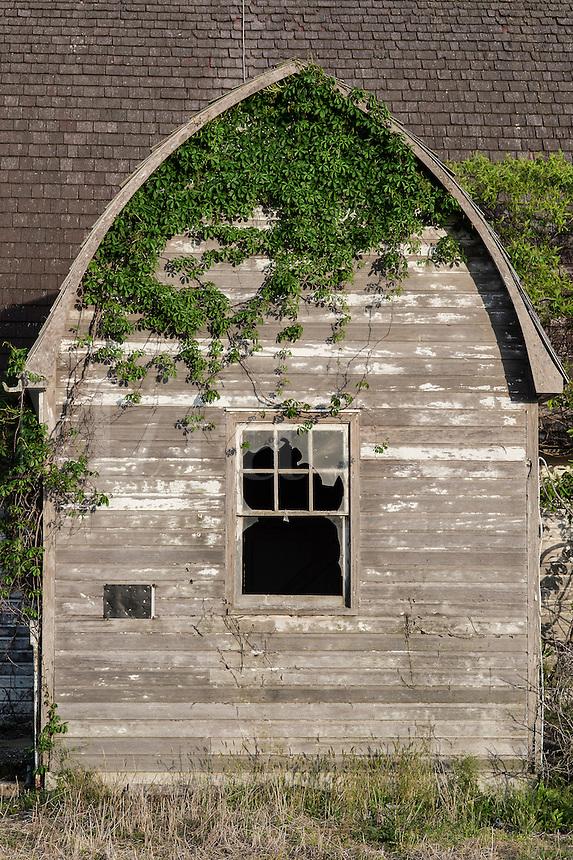 Abandoned rural barn