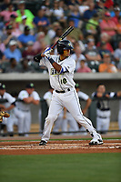Second baseman Luis Carpio (18) of the Columbia Fireflies bats in a game against the Lexington Legends on Saturday, April 22, 2017, at Spirit Communications Park in Columbia, South Carolina. Lexington won, 4-0. (Tom Priddy/Four Seam Images)