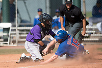 Colorado Rockies catcher Franklin Garcia (70) applies the tag to Jesse Hodges (19) to prevent a run during a Minor League Spring Training game against the Chicago Cubs at Sloan Park on March 27, 2018 in Mesa, Arizona. (Zachary Lucy/Four Seam Images)