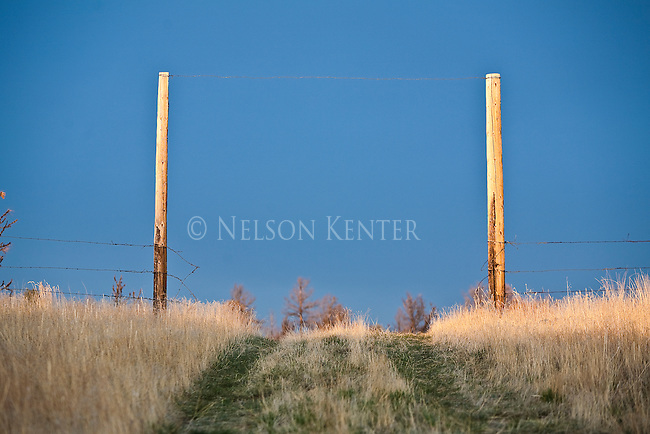 Fence posts mark the open gate on the top of a grassy hill in Montana