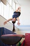 2014 gymnastics: Los Altos High School and Mountain View High School
