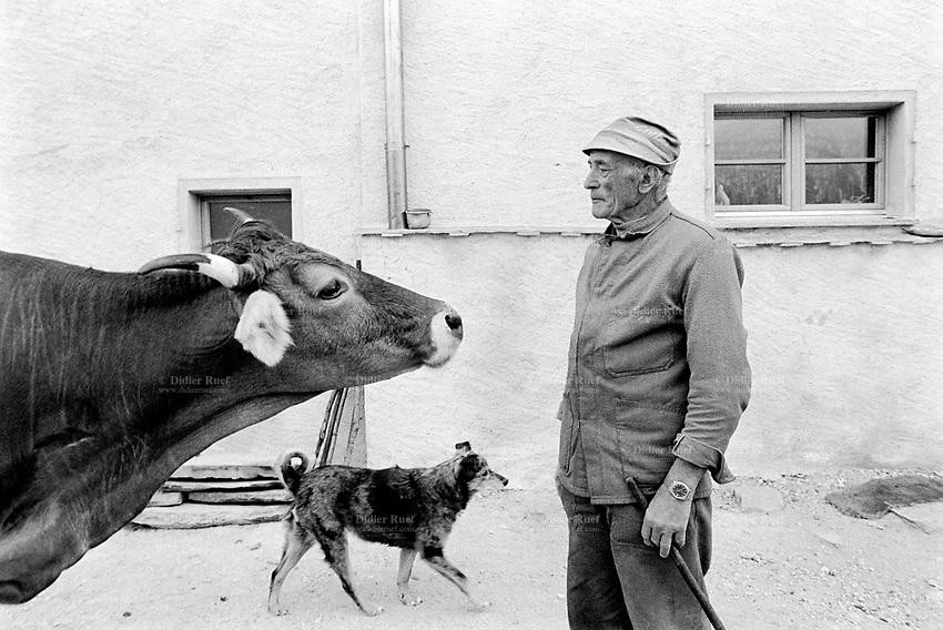 Switzerland. Canton Graubünden. Viano. Poschiavo valley. Luigi Merlo with his dog and a cow near his small farm. Swiss alpine farmers. Alps mountains peasants.  © 1995 Didier Ruef